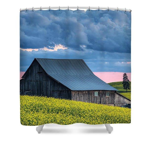 Canola Sunset Shower Curtain