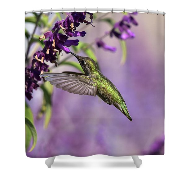 Captivated IIi Shower Curtain