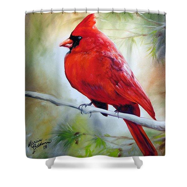 Cardinal 18 Shower Curtain