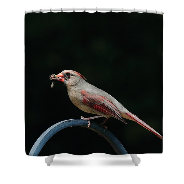 Food For Her Children Shower Curtain