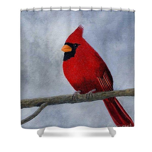 Cardnial Shower Curtain