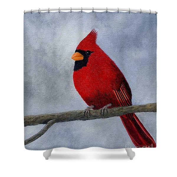 Shower Curtain featuring the painting Cardnial by Tracey Goodwin