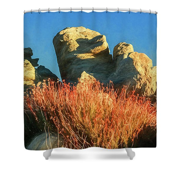 Carns And Daisies Shower Curtain