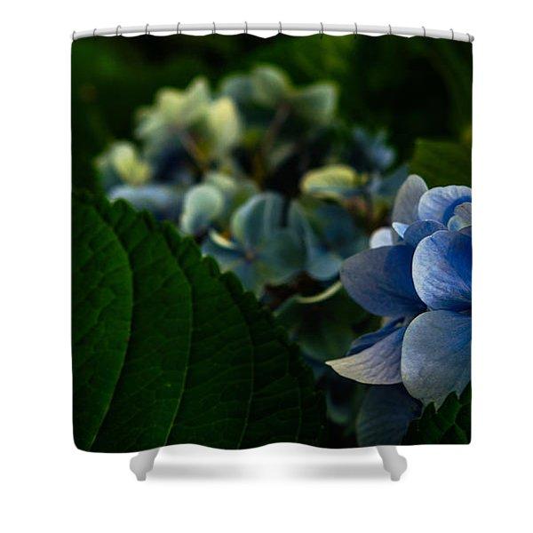 Carolina Blues Shower Curtain