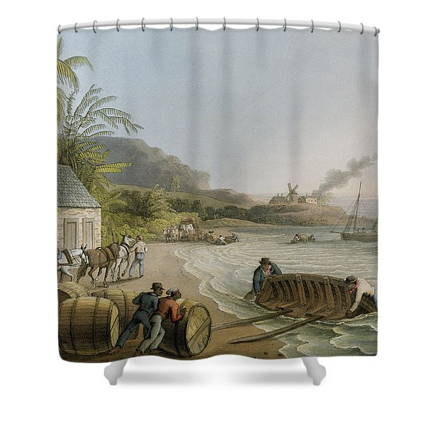 Carting And Putting Sugar Hogsheads On Board Shower Curtain