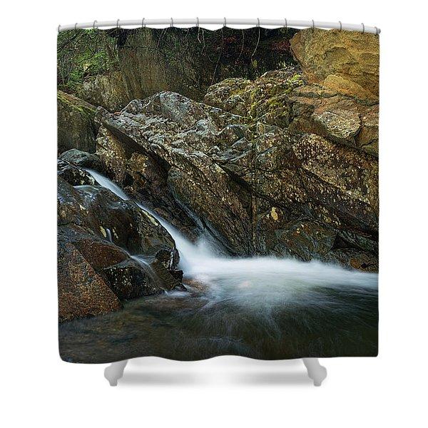 Cascade Stream Gorge Shower Curtain