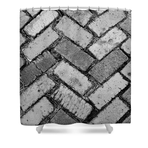 Castle Path In Black And White Shower Curtain