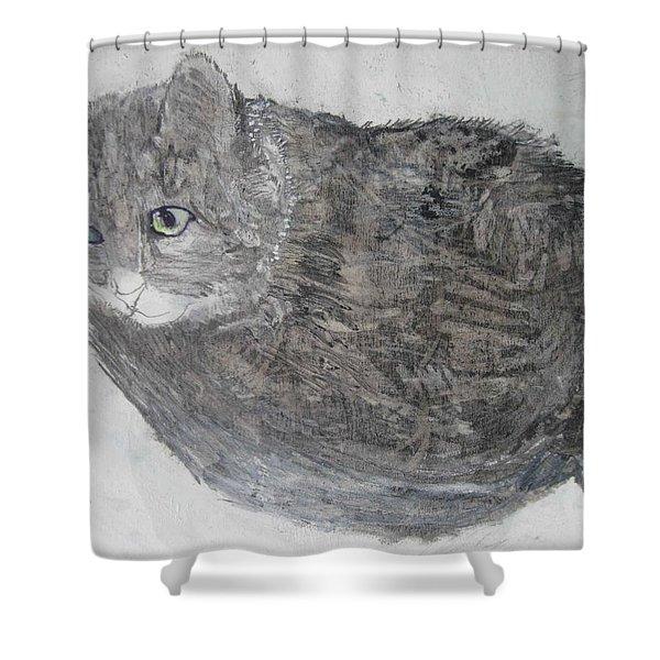 Cat Named Shrimp Shower Curtain