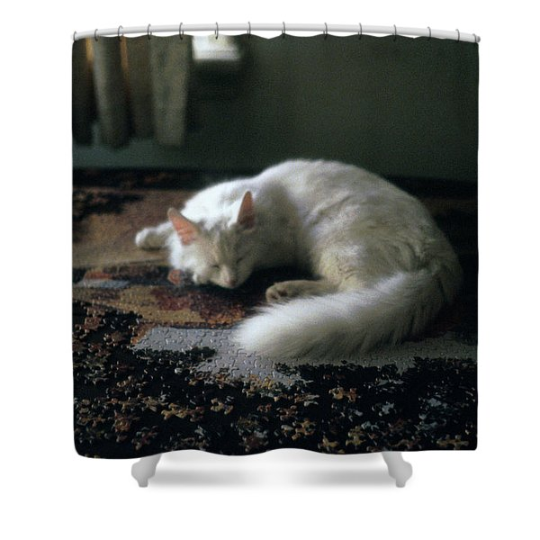Cat On A Puzzle Shower Curtain