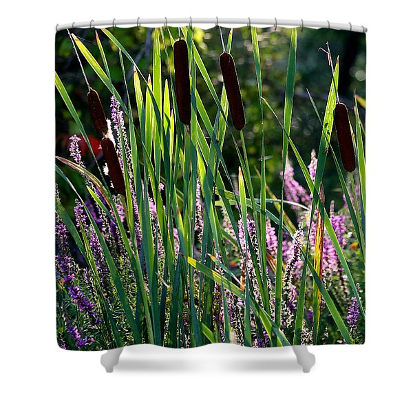 Cat Tails In The Morning Shower Curtain