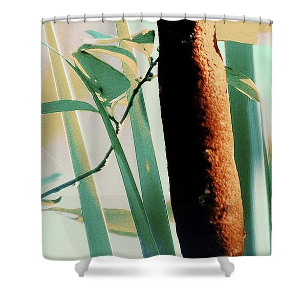 Cat Tales Shower Curtain