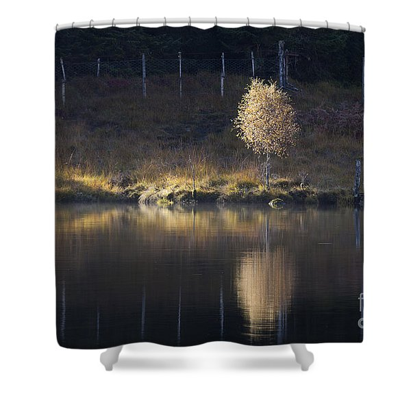Catching The Light Shower Curtain