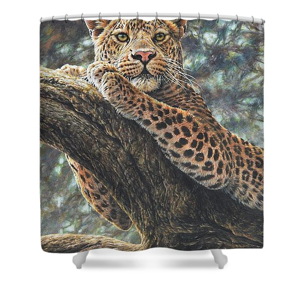 Shower Curtain featuring the painting Catching The Sun by Alan M Hunt