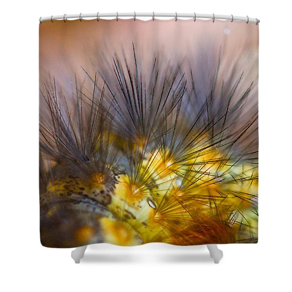 Caterpillar Hair Shower Curtain