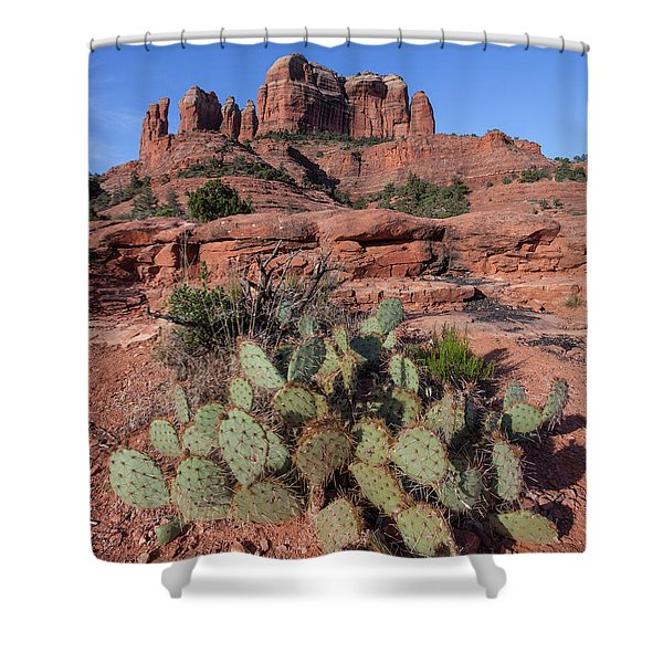 Cathedral Rock Cactus Grove Shower Curtain