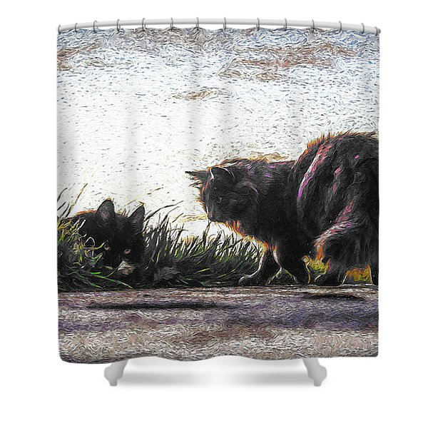 Cats Xxx Shower Curtain