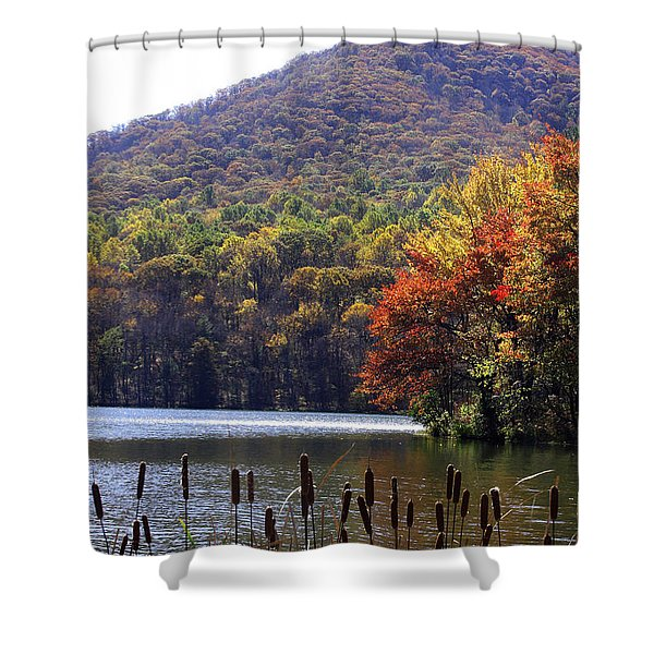 Cattails By Lake With Sharp Top In Background Shower Curtain