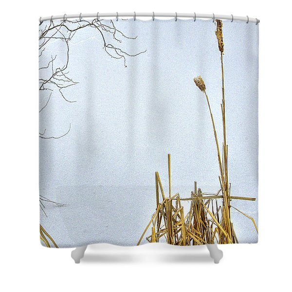 Cattails In Winter Shower Curtain