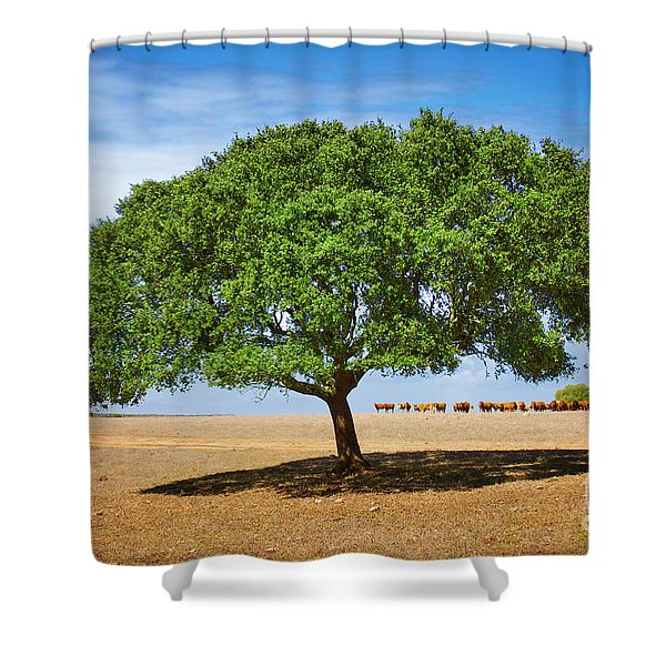 Cattle And Tree Shower Curtain