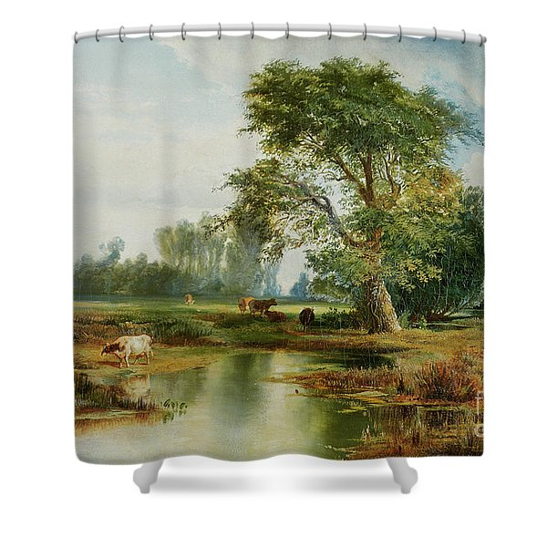 Cattle Watering Shower Curtain