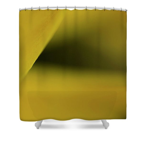 Cavern Shower Curtain