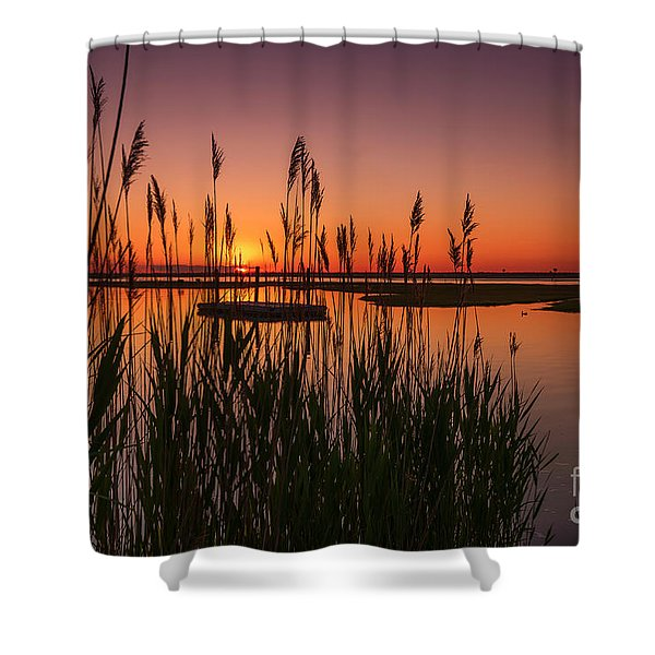 Cedar Beach Sunset In The Reeds Shower Curtain