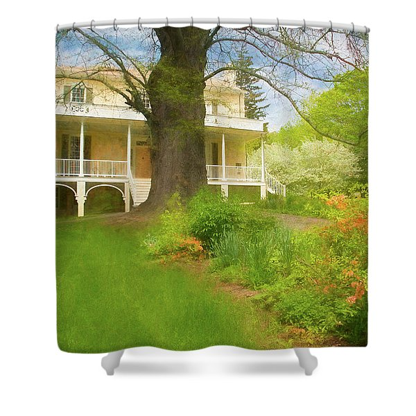 Shower Curtain featuring the photograph Cedar Grove In Spring by Nancy De Flon