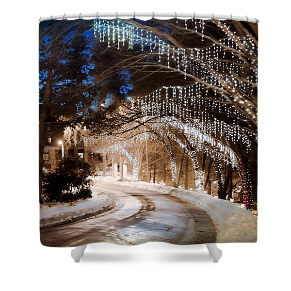 Celebrate The Winter Night Shower Curtain