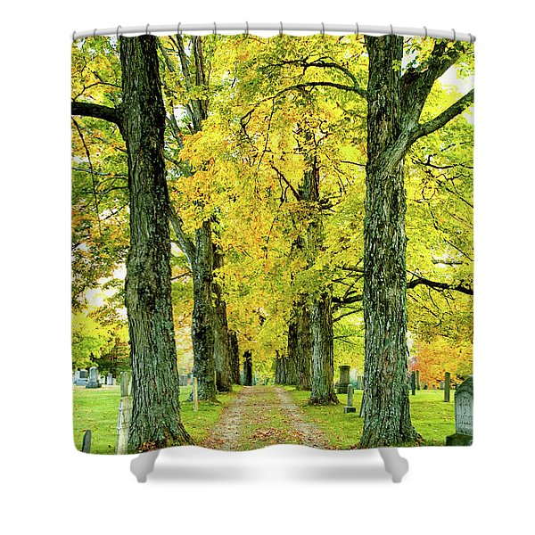 Cemetery Lane Shower Curtain
