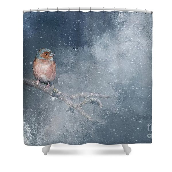 Chaffinch On A Cold Winter Day Shower Curtain