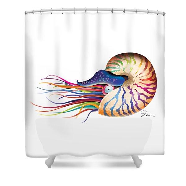 Chambered Nautilus On White Shower Curtain