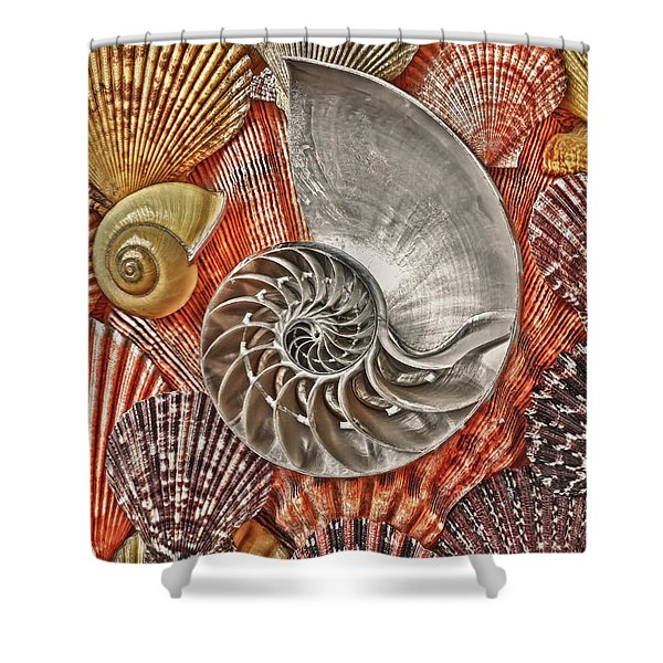 Chambered Nautilus Shell Abstract Shower Curtain