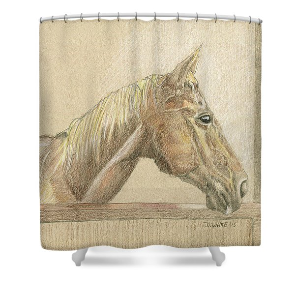 Chance Shower Curtain