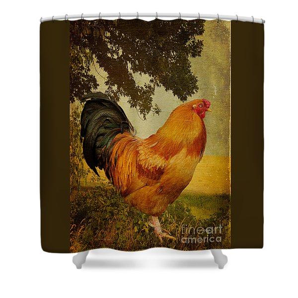 Chanticleer Shower Curtain