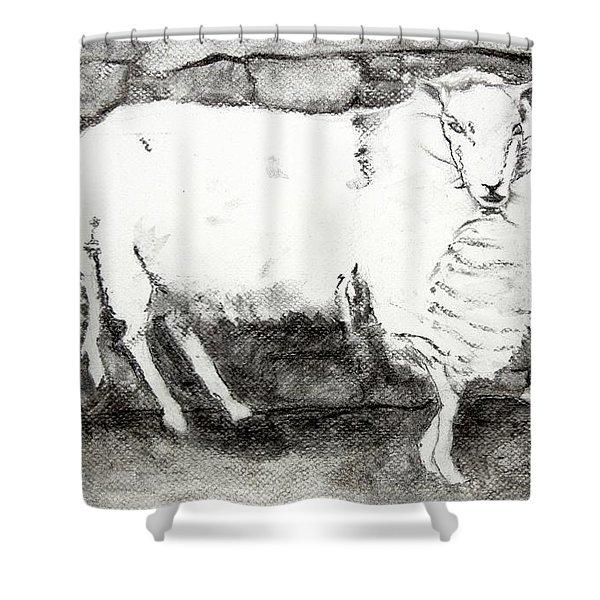 Charcoal Sheep Shower Curtain