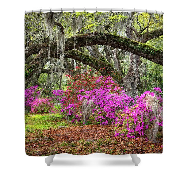 Charleston South Carolina Spring Flowers Lowcountry Landscape Photography Shower Curtain