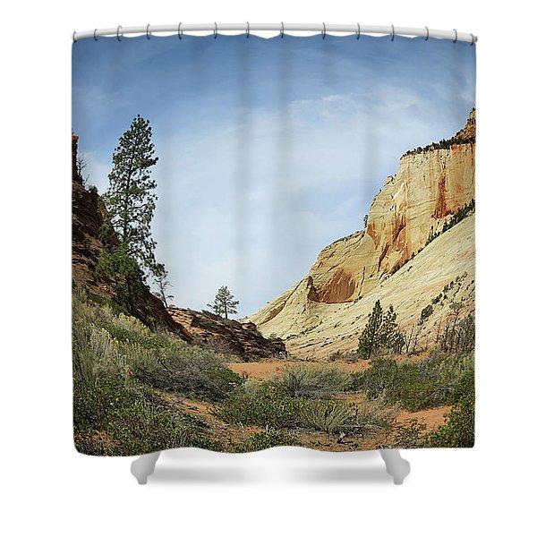 Checkerboard Mesa Shower Curtain
