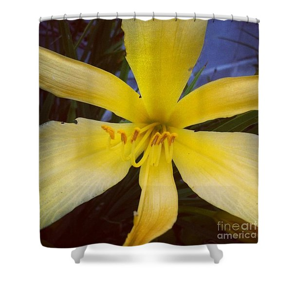 Cheer Shower Curtain