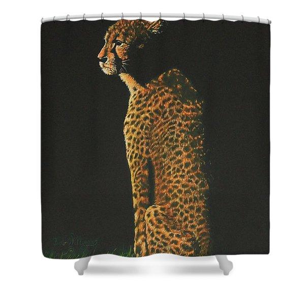 Cheetah At Sunset Shower Curtain