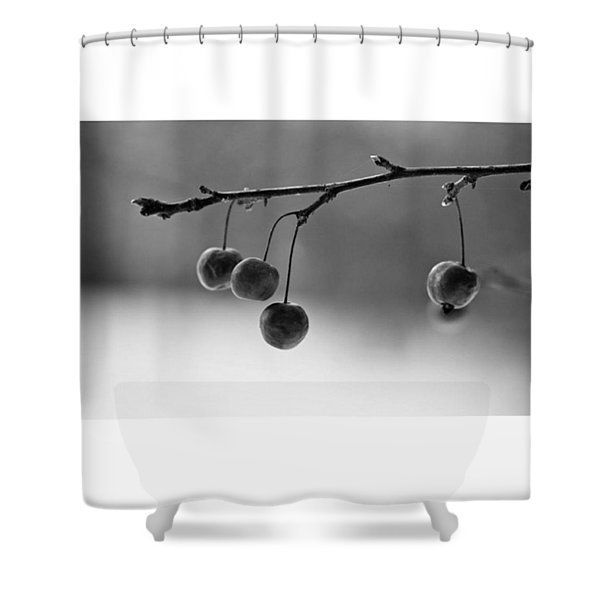 Cherries  #monochrome  #blackandwhite Shower Curtain