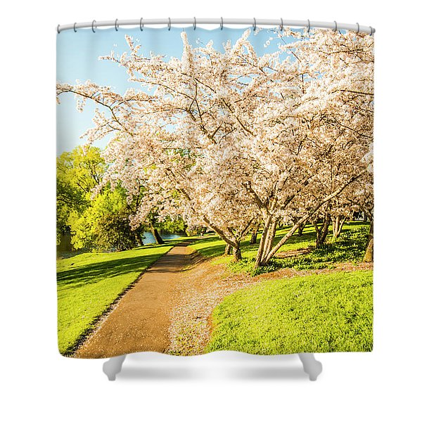 Cherry Blossom Lane Shower Curtain