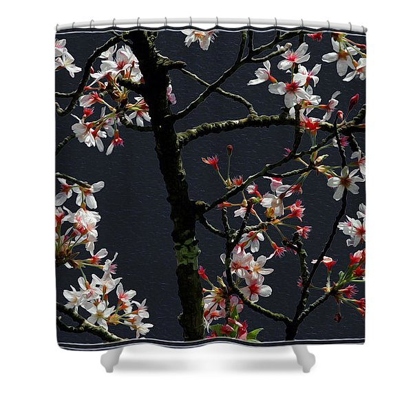 Cherry Blossoms On Dark Bkgrd Shower Curtain
