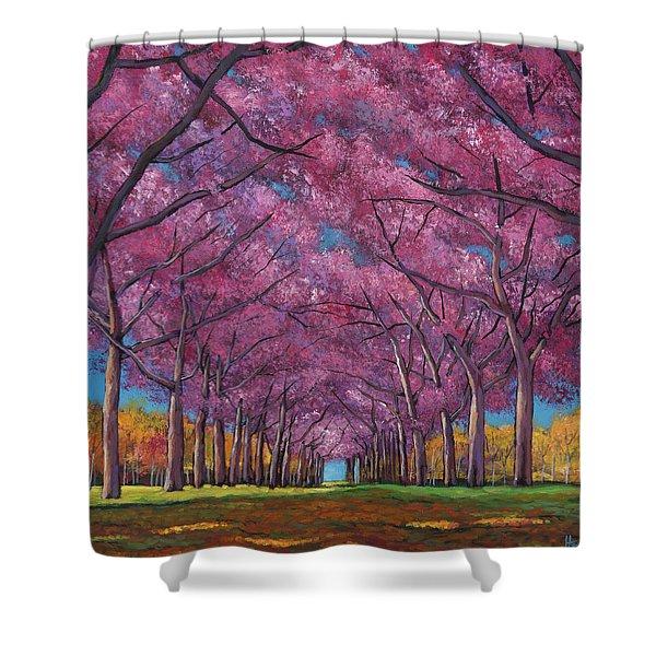 Cherry Lane Shower Curtain