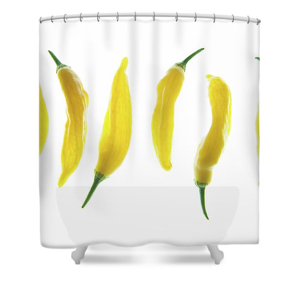 Chillies Lined Up II Shower Curtain