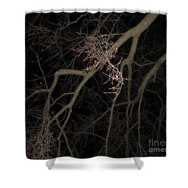 Chilling Night Shower Curtain