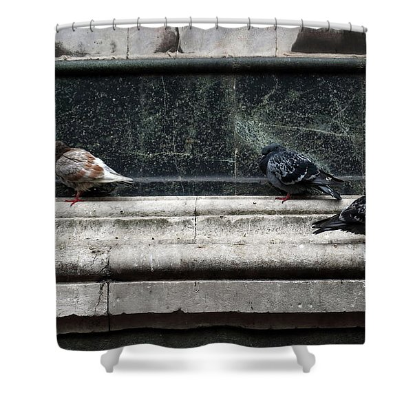 Chilly Day Duomo Shower Curtain