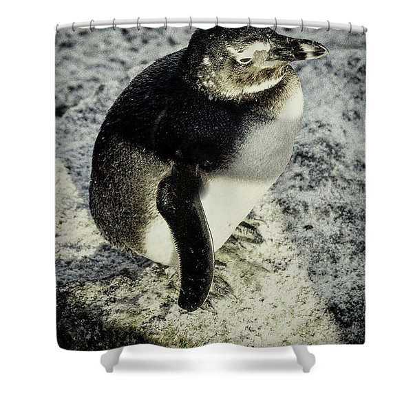 Chillypenguin Shower Curtain