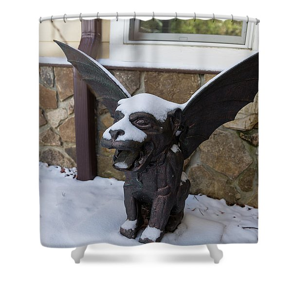 Chimera In The Snow Shower Curtain