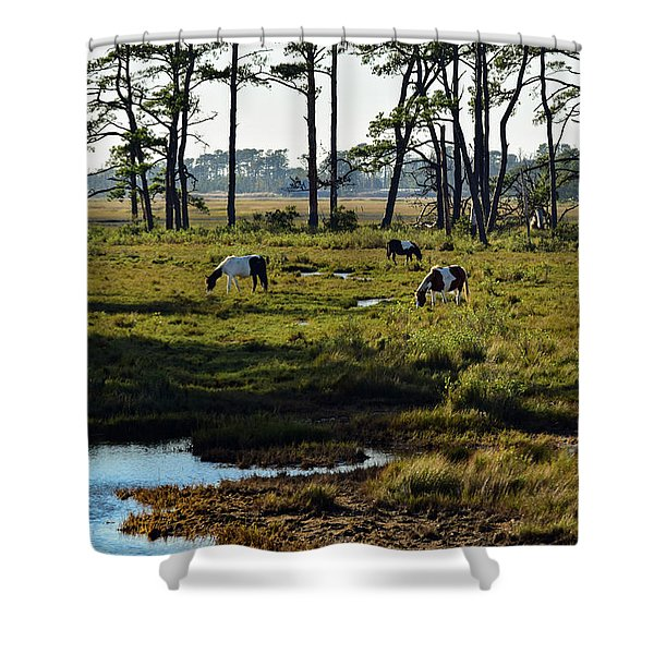 Chincoteague Ponies Shower Curtain