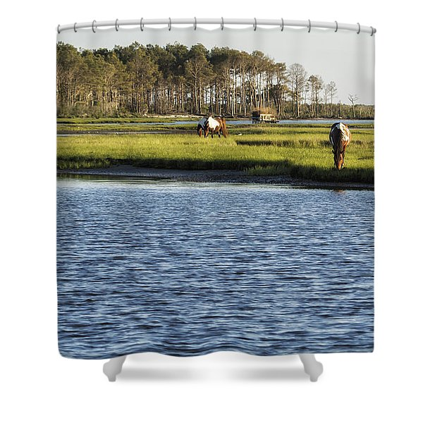 Chincoteague Ponies On Assateague Island Shower Curtain